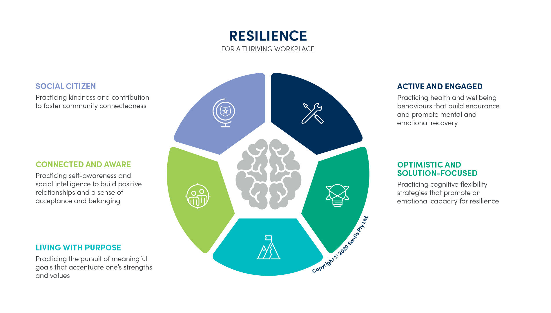 Sentis - The Five Practices of Resilience Model